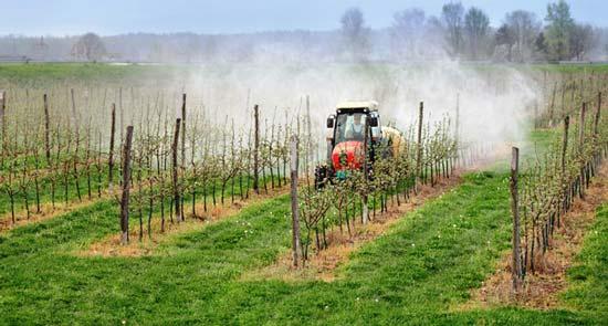 آلودگی کشاورزی